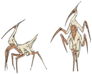 crane alien col variation1