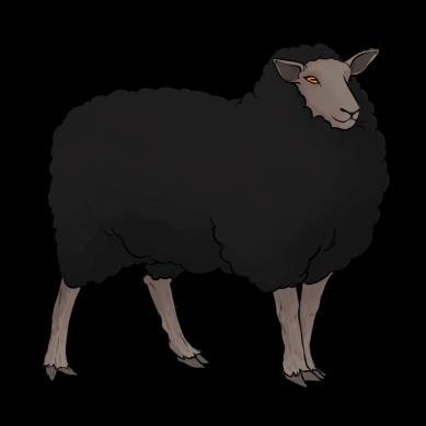 sheep_black